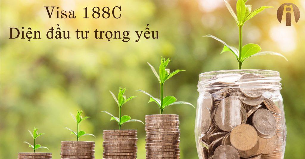 Visa-188-Dien-dau-tu-trong-yeu