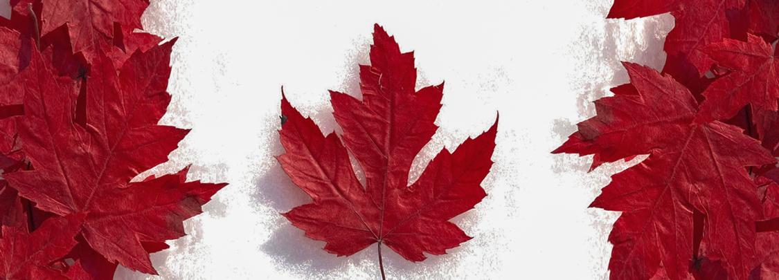 Đầu tư định cư Canada dễ hay khó?