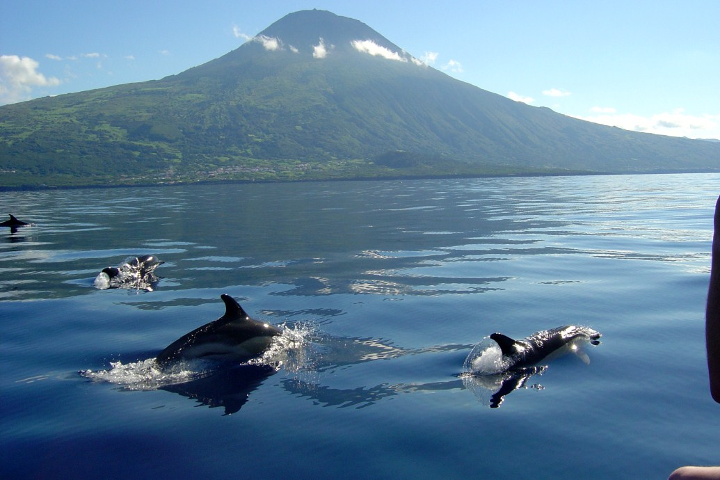 Đến Azores bạn còn có cơ hội tắm suối khoáng nóng, đắm chìm trong vẻ đẹp của các thị trấn ven biển