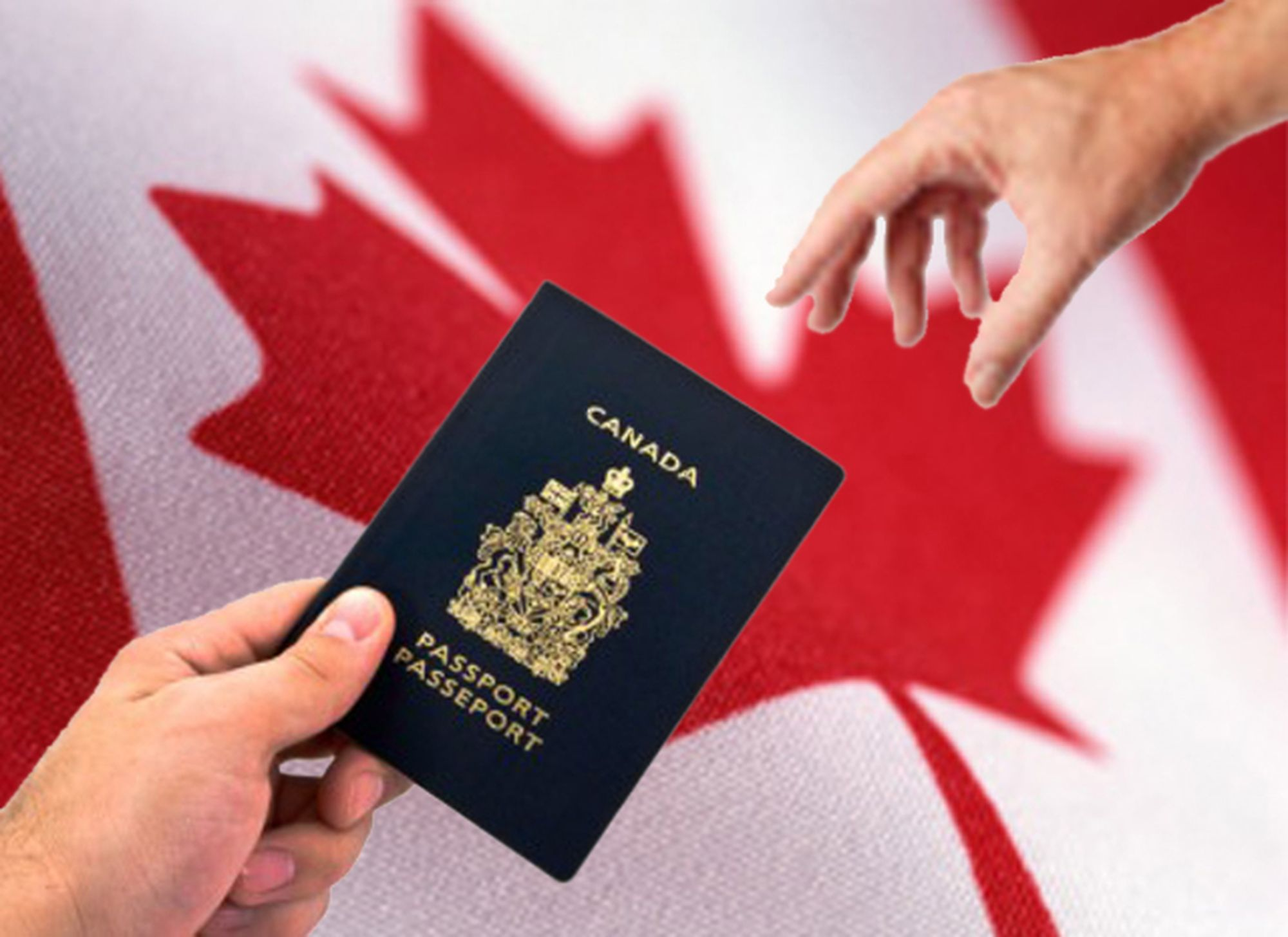 The purpose of the PNP is to increase the economic benefits of immigration to Prince Edward Island (PEI) by providing the province with a mechanism to prioritize and nominate candidates for permanent residency