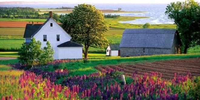 Tỉnh vườn Canada - Nơi nghỉ dưỡng bậc nhất cho người định cư lâu dài.