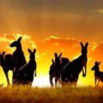 Nước Úc tiếp tục dẫn đầu với Top 3 thành phố đáng sống nhất thế giới năm 2019